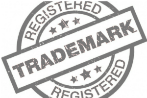 All of IPR Services Which You Need Like Trademark Registration And Litigation India