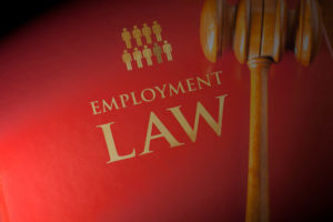 Job Search Efforts Key to Your Employment Case