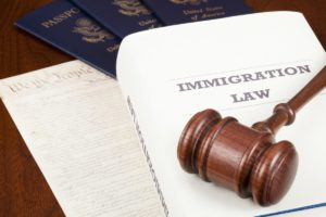 Visa Consultants The Important Role They Play in Immigration