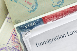 Which Ins Forms to File For US Employment Eligibility Verification